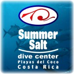 Logo Summer-Salt