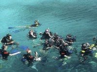 Marine Explorers diving courses